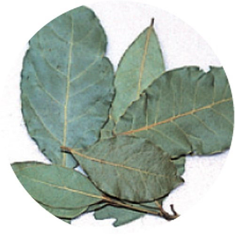 Tree organic herbs Laurel 100g of life by Life Tree